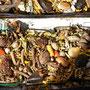 Die Mischung macht's - auf dem Hexermarkt von La Paz
