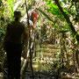 Wir kämpfen uns durch den Dschungel
