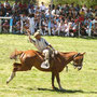 Fiesta del Puestero - Rodeo in Junin