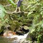 Wanderung im Valle Cocora - ueber abenteurliche Hängebrücken