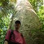 Im Urwald ist alles ein bisschen größer