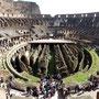 ... die Vorstellungen geleitet: Hebevorrichtungen, Umkleidekabinen für Gladiatoren, Käfige für Tiere.