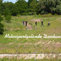 Maikäferturnier am 31.05.2014, Motorsportgelände in Dieskau