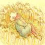 狐童と薄の巣 (ニイロ)