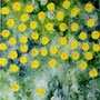 """Victorious Dandelion"" (Diptych), acrylic and nature print on canvas, total 20""x32"", 2005. NFS"