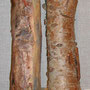 "Which is the real log? ""Double Take"", chicken wire, paper mache, tissue, paint. 38cm x 9cm, 2007."