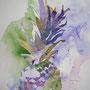 Ananas I, 40 x 40 cm