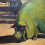 Hängebauchschwein in grün: Acryl auf Leinwand, 40 x 40 cm