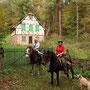 Disteldorf - ein verlassenes Örtchen, mitten im Wald