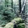 Der Natur belassen
