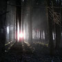 """Bild """"Lichtquelle"""" mit Rahmen 70x50cm   € 80.-  sofort erhältlich!"""