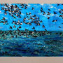 "Paul Best - ""Solent Seabirds"" - £55"