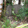 鶴ヶ峰・馬頭観音(タエと若駒)の伝説がある石仏です