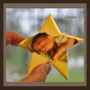 Grabbild, Sternenkinder, Porzellanbild, Andrea Weinke-Lau, Die anderen Bilder, Fotos auf Porzellan