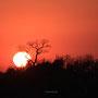 Die Sonne geht auf über Afrika ...