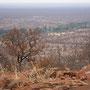 ... das grüne Band im Hintergrund - der Limpopo