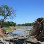 der Limpopo ... Grenzfluß zwischen Botswana und Südafrika