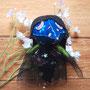 016番ちゃんは青地の花柄マスクがかわいい。