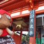 000番ちゃんはじめての京都。