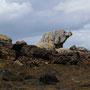 Granit chausiais : l'éléphant