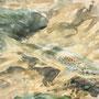 Truite fario dessinée et peinte à plat ventre, de la berge (Ariège, août 2007)
