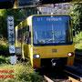 Ein DT8.5 auf der Fahrt durch den Stadtpark von Cannstatt her kommend.