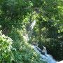 知床三重の滝