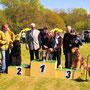 Bester Terrier der Baltic Show