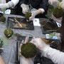 陶芸をやる方も参加しているそうで土にはみなさんなれております。