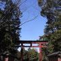 この鳥居までの間がちょっとだけ下鴨神社を彷彿とさせた!