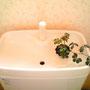 どこにあるかと言えば2Fのトイレ。我が家のトイレは昔ながらの花柄壁紙!
