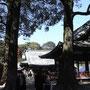 お宮参りの家族もちらほら。幸せの風景。