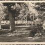 Kolk - Kolga, Estland, Soldatenfriedhof, historische Ansicht, vermutlich 2. Weltkrieg