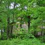 Herrenhaus Gross-Born - Lielborne, Kurland, Lettland (2016)