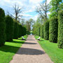 Schloss Saggad - Sagadi, Estland (2016), Park