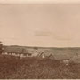 Blick auf das Gut Astaschowa - Astasova, Witebsk, Lettland (1908)