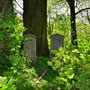 Glaubitten - Glowbity, Ostpreussen - Polen (2015), Verwilderter Familienfriedhof im Park