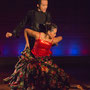 GB2013 Pasodoble