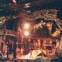 アニマルキングダムでのショー。
