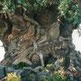 たくさんの動物が彫られた木。アニマルキングダム入り口にどーんと立っています。