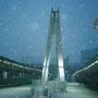 前日関東地方に大雪が降りました