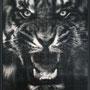 Tigre#1 122 x 95 cm  Pièce unique * Plus disponible