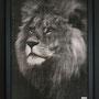 Lion#2  123 x 96 cm  Pièce unique Disponible Gallery27 Dubaï