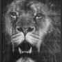 Lion#1  123 x 96 cm  Pièce unique  Plus disponible