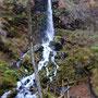 千ヶ滝コースはハイキング初心者に最適