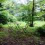あいにくの天気でお庭はほとんど眺めるだけだったけれど・・・