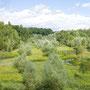"""Panorama NSG """"In den Eichen"""""""