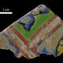 Echantillon BDX 11862. Fouilles de l'Ak Saray de 1996.  Conservé au Musée Amir Temur de Shahrisabz (photo : C.Ollagnier, 2008)