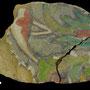Echantillon BDX 11884. Fouilles de l'Ak Saray de 1996.  Conservé au Musée Amir Temur de Shahrisabz (photo : C.Ollagnier, 2008)