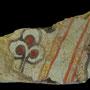 Echantillon BDX 11881. Fouilles de l'Ak Saray de 1996.  Conservé au Musée Amir Temur de Shahrisabz (photo : C.Ollagnier, 2008)